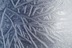Hoarfrost on glass Royalty Free Stock Images