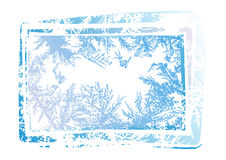 Hoarfrost grunge background Stock Photos