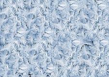 Hoarfrost invernal branco no vidro de indicador Fotos de Stock Royalty Free