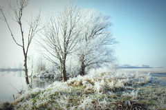 Hoarfrost landscape on Havel River Havelland, Germany Stock Photos