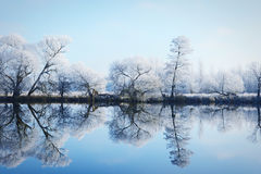 Hoarfrost landscape on Havel River Havelland, Germany Royalty Free Stock Images