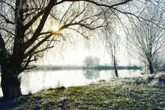 Hoarfrost landscape on Havel River Havelland, Germany Royalty Free Stock Photo