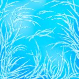 Beautiful winter patterns of hoarfrost on frozen glass. royalty free illustration