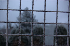 Hoarfrost on metal fence, Bohemia Royalty Free Stock Photos