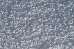 Hoarfrost na Śnieżnym szczegółu tle Zdjęcia Royalty Free