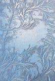 Hoarfrost na okno Zdjęcia Stock