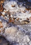 Hoarfrost over dead autumn leaves in sunlight royalty free stock photos
