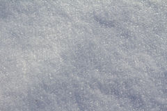 Hoarfrost on the plants in winter field Royalty Free Stock Photography