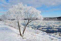 hoarfrost rzeka Zdjęcia Royalty Free