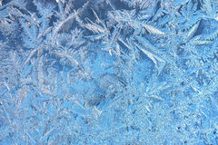 Hoarfrost texture Stock Photography