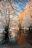Hoarfrost trees in Wintry. Picturesque river in countryside with hoarfrost trees in Wintry Stock Image