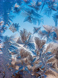 Hoarfrost on the window Royalty Free Stock Images