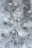 Hoarfrost on the window Royalty Free Stock Photography