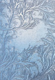Window frost pattern on glass Stock Photos