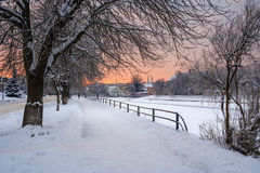 Hoarfrost on a winter morning. Bank of the river with trees covered with rime on a winter morning Stock Image