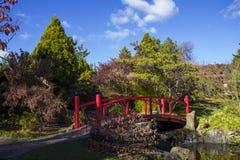 Hobart, botanical gardens Royalty Free Stock Image