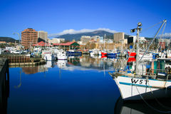 Hobart Dock and Mt Wellington Royalty Free Stock Photos
