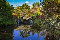Hobart, ogródy botaniczni Fotografia Royalty Free