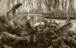 Hobbit hem i träna på Burnby trädgårdar Arkivfoton