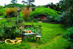 Hobbit holes Royalty Free Stock Images