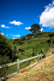 Hobbiton. The Shire, New Zealand Stock Photography