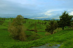 Hobbitons Shire. Green hills used in trilogy Lord of the Rings as Hobbiton village Royalty Free Stock Photos