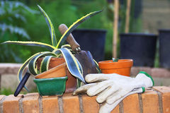 Hobby dell'attrezzatura di giardinaggio Immagini Stock Libere da Diritti