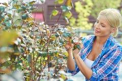 Hobby of gardening Royalty Free Stock Photography