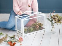 Hobby leisure creating flower arrangement decor. Hobby and leisure concept. woman ccreating a unique flower arrangement in a glass box to decorate her home Stock Photos
