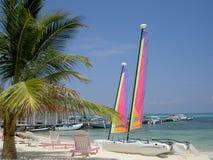 hobie пляжа стоковые фото