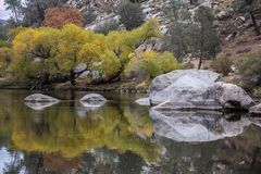 Hobo Campground near Sequoia National Park. Beautiful light reflection of the rocks and trees in the river royalty free stock images