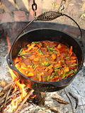 Hobo Stew Cooked over an Open Fire. Hobo stew is cooked in a cast iron pot over an open fire royalty free stock images