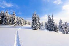 Hoch auf den Bergen im Wald, der mit Schnee dort bedeckt wird, ist die einsame alte hölzerne Hütte, die mit Zaun auf dem Rasen st Stockfotos