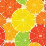 Hoch-ausführlicher Hintergrund der abstrakten Zitrusfrucht. Nahtlos Stockfotos