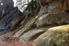 Hoch Steine im Wald Lizenzfreies Stockbild