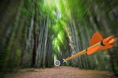Hochgeschwindigkeitspfeilfliegen durch unscharfen Bambuswald mit Bogenschießenziel im Fokus, Teilfoto, Wiedergabe des Teils 3D Stockbilder