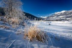 Hochlandtal bedeckt durch Schnee in den Alpen am sonnigen Tag Stockfotos