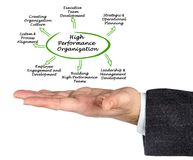 Hochleistungs-Organisation stockfoto
