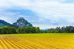 Hochosterwitz castle and fields in Austria Stock Image