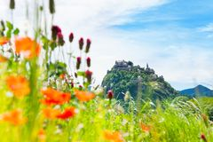 Hochosterwitz castle and poppy flowers Stock Photography