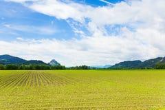 Hochosterwitz fields Stock Photo