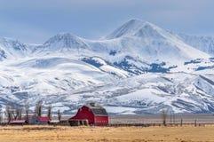 Hochragender Schnee bedeckte Berge über einem kleinen Bauernhof in Montana lizenzfreie stockbilder
