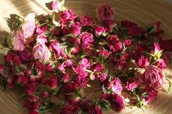 Hochrot getrocknete Rosen lizenzfreies stockbild