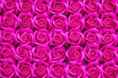 Hochrot stieg Blumenhintergrund lizenzfreie stockbilder