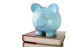Hochschulsparungen Lizenzfreie Stockbilder