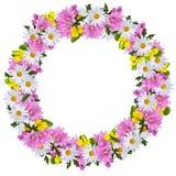 Hochsommerkranz mit Gänseblümchen Malve und Veilchen für das Feiern des Hochsommers lizenzfreies stockbild