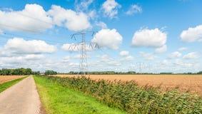 Hochspannungsmaste in einer sonnigen landwirtschaftlichen Landschaft Lizenzfreie Stockfotografie