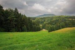Hochwald en Sajonia Imágenes de archivo libres de regalías