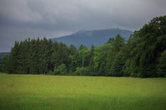 Hochwald in saxony Royalty Free Stock Photos