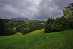Hochwald w Saxony Fotografia Stock